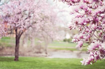 Květnové pobyty 2021